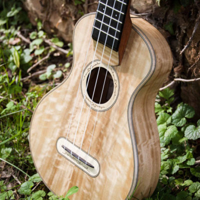 "Poplar ""elvish"" ukulele. Poplar soundboard, back and sides. Figured maple bindings and decorations. Mahogany neck and ebony fingerboard."